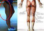 Упражнения для убирания ушек на бедрах – упражнения для похудения и уменьшения бицепса внутренней части, внешней стороны, задней поверхности и ягодиц